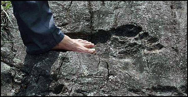 A Bigfoot footprint?